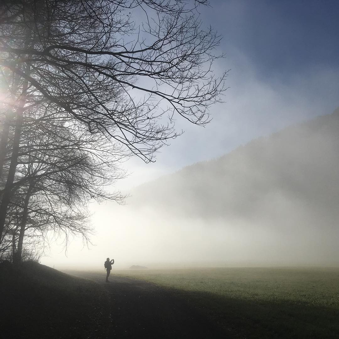 Florian Selig Fog Tree Man